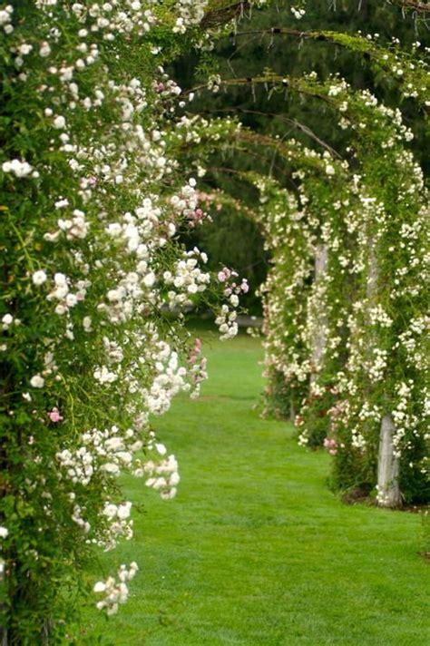 Garden Flower Arch Wonderful Arches Great Spaces