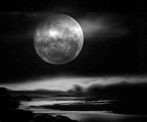 black and white moon wallpaper black and white moon pictures 8 free hd wallpaper