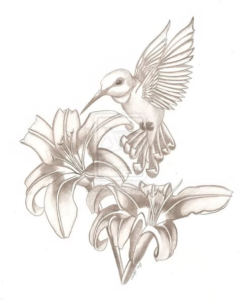 tattoo designs hummingbirds and flowers hummingbird images designs