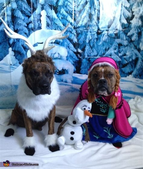 frozen dog costumes
