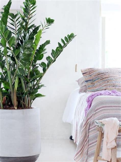 Schlafzimmer Pflanzen by Schlafzimmer Ideen Pflanzen Die Entspannen