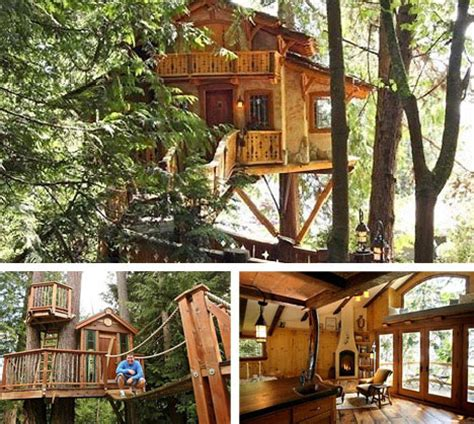 Livable Tree House Plans 10 Amazing Tree Houses Plans Pictures Designs Ideas Kits Urbanist