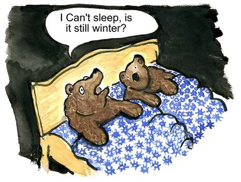 do bears use the bathroom during hibernation a very long sleep facts for kids wild life nature