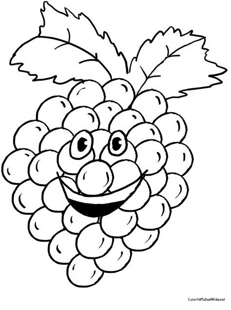 purple grapes coloring page grapes drawing clipart panda free clipart images