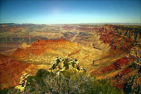 grand address in arizona the grand animal photo