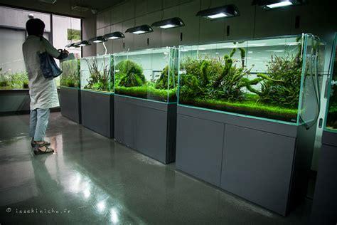 aquarium design amano indonesia visite du show room ada aqua design amano issekinicho