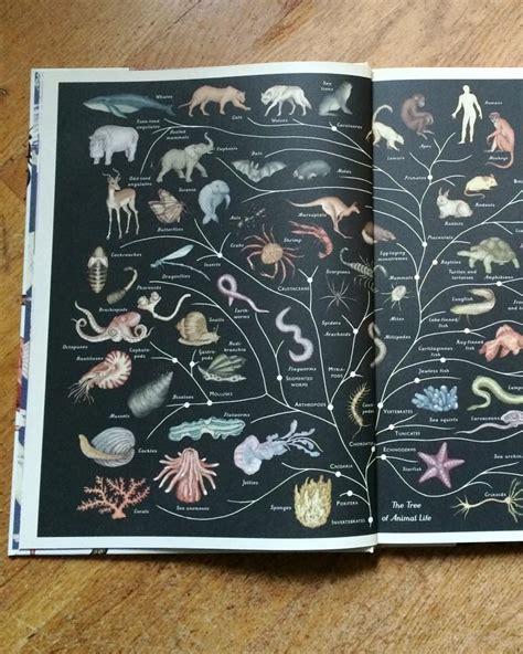 animalium poster book welcome animalium wasecabiomes