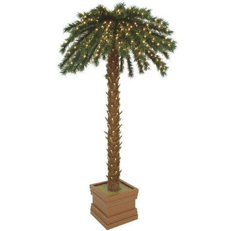 Outdoor Light Up Palm Tree Pictures Of Pine Trees Cliparts Co