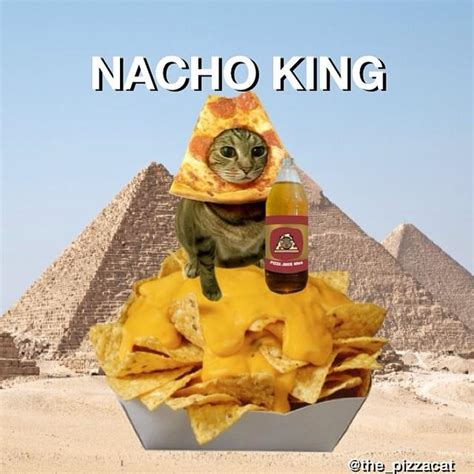 Funny Meme Photos - national nachos day 2015 best memes funniest photos on