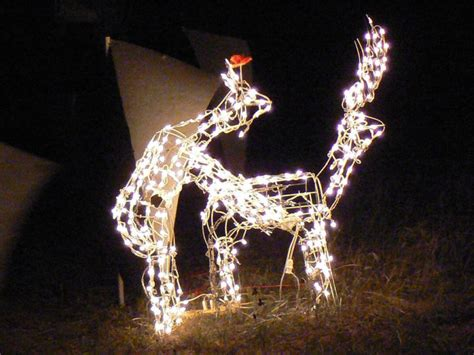 humping reindeer christmas lights