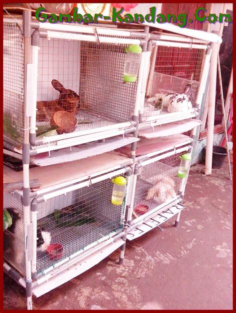 Kandang Kucing Pipa kreasi kandang kelinci dari pipa pvc kumpulan gambar