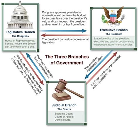 Background Check Government Figure Of The Three Branches Of Government Illustrating The Checks And Balances