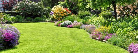 spring gardening celtic mowers grass feeding fertilisers
