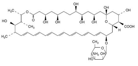 carbohydrates exles lipids chemical formula