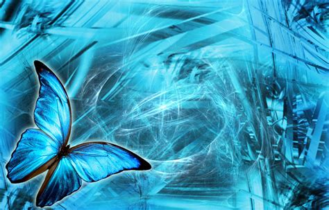 Calendario Animal Protector Imageslist Wallpapers With Butterflies 3