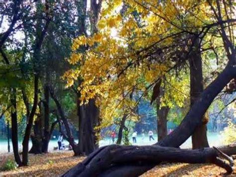 imagenes de otoño en mendoza tonada de oto 209 o mercedes sosa pocho sosa oscar puebla