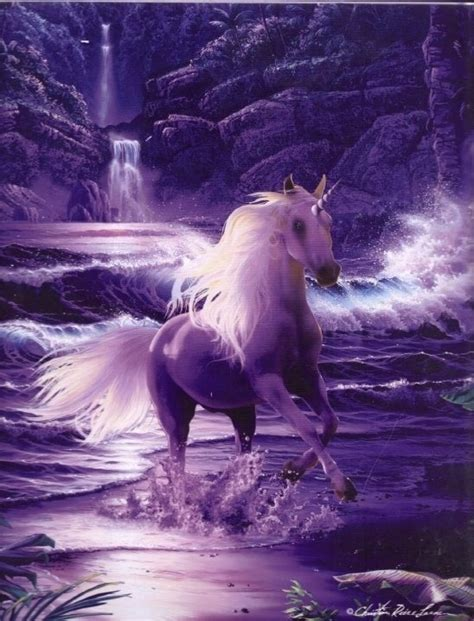 My Secret Unicorn A Touch Of Magic Buku Anak 78 images about dragonflies and purple unicorns on wings flies and