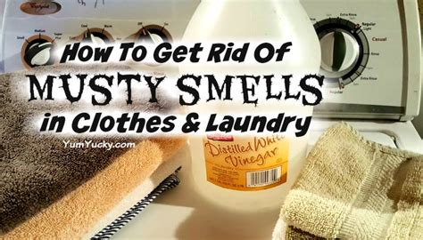how to get rid of musty smell in furniture how to get rid of musty smells in clothes and laundry
