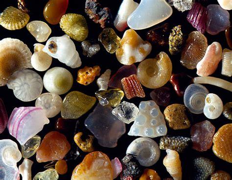 a grain of sand nature s secret books grains of sand the secret of nature danni l