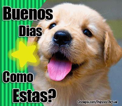 imagenes graciosas de buenos dias de perros buenos d 237 as tarjetitas ondapix tarjetitas ondapix