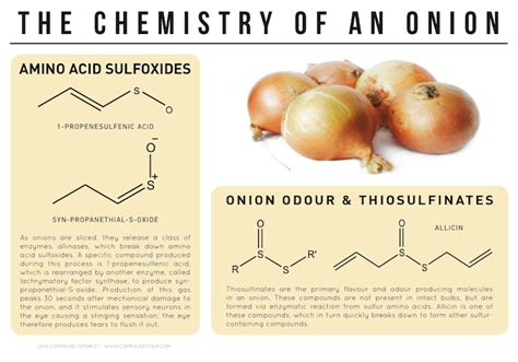 chemistry   onion compound interest