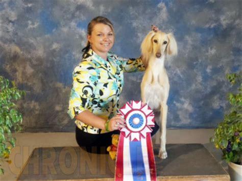 lynn lew k9 vids durango kennel club saturday may 21 2016 canine