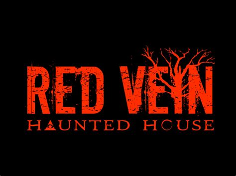 haunted vessels and cursed objects paranormal diaries of gaspard books vein haunted house