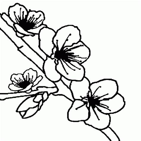coloring page flower bud trees in bud coloring pages