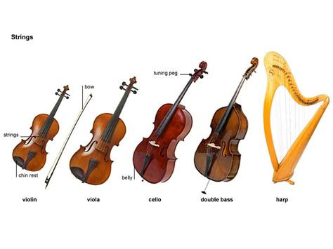 string section instruments string 1 noun definition pictures pronunciation and