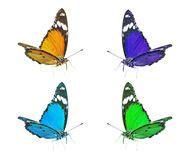 Papillons Color 233 S Images Libres De Droits Image 35501609