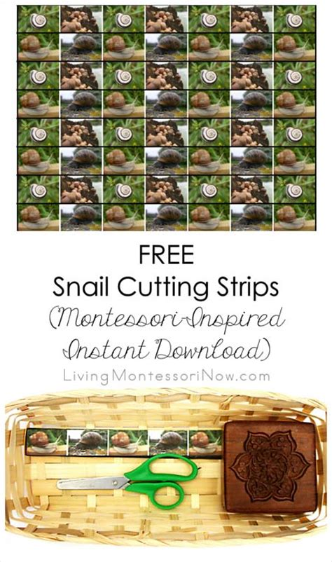 printable montessori cutting strips free snail cutting strips montessori inspired instant
