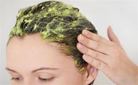 cara membuat minyak kelapa alami untuk rambut cara mudah membuat masker rambut alami di rumah