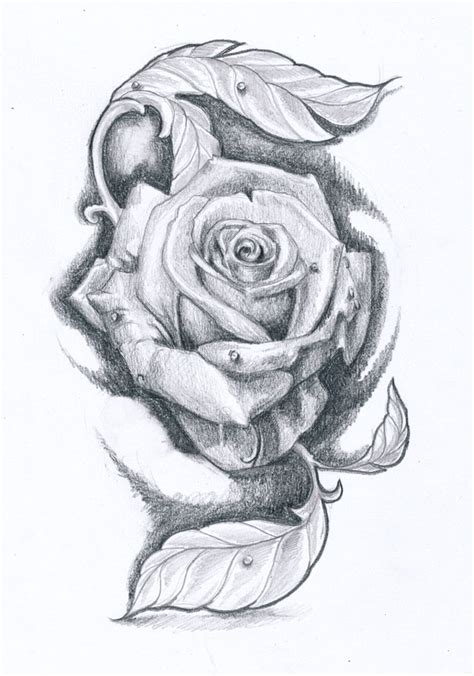 rose tattoo design ii by klosmagda on deviantart