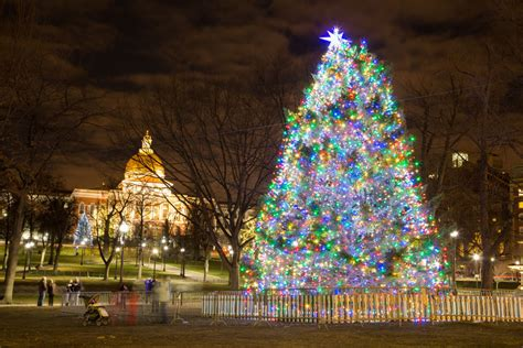pictures on boston christmas tree lighting 2014 easy