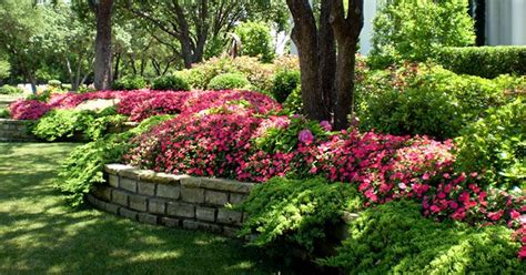 Landscape Lighting Frisco Tx Landscape Design Frisco Plano Landscape Design Landscape Lighting Mckinney