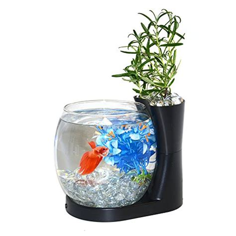 betta fish tank light top 10 most wished products in fish bowls october 2018