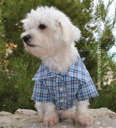 mimi y tara patrones de ropa para perros moved permanently