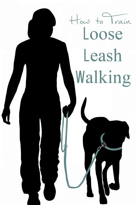 how to to walk leash how to leash walking it s or nothing