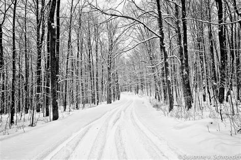 Wall Murals Forest Scene black amp white photography winter landscape snowy road fine