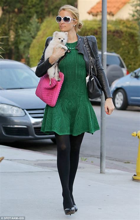 Companion Bench Paris Hilton Dons Festive Frock As She Takes 13k Pup Out