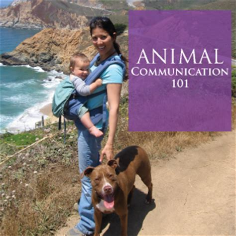 my pet connection inspirational â tailsâ of adoption books how to a psychic connection with your pet animal