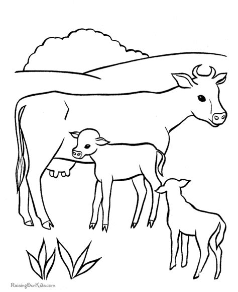 cow colors cow drawing color coloring pages