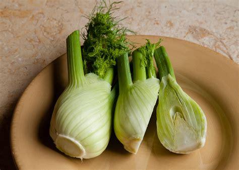fennel varieties lopez island kitchen gardens