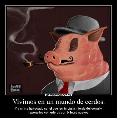 imagenes graciosas de cerdos para navidad vivimos en un mundo de cerdos desmotivaciones