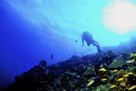 dive certification padi scuba certification weekend course got air