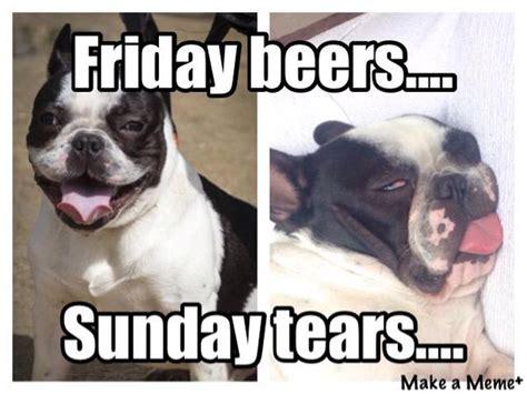 French Bulldog Meme - funny french bulldog memes image memes at relatably com