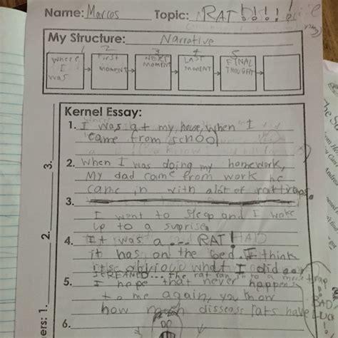 My The Fanatic Essay by Is My Essay Ok Thesisdefinicion Web Fc2