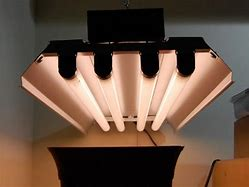 Image result for Light Bulbs & Tubes