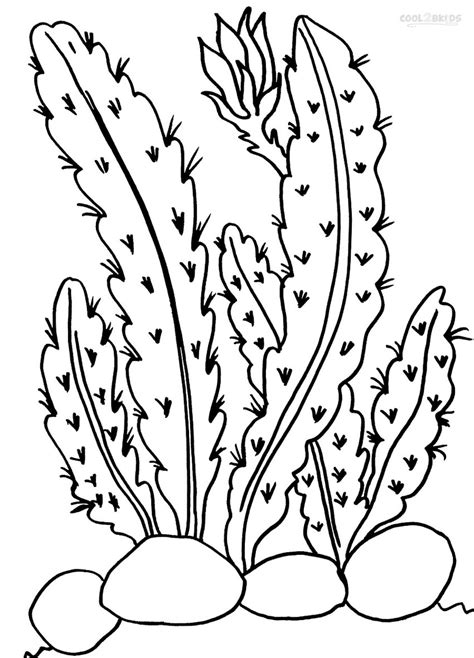 free coloring pages of sunset in desert