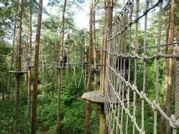 backyard obstacle course for adults 17 best images about rope course on pinterest trekking rope ladder and carnival breeze